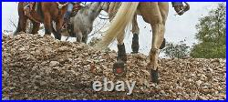 Cavallo SIMPLE Regular Sole Multi Purpose All Terrain Boots + FREE Hoof Pick 0-6