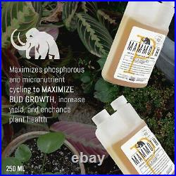 Mammoth P Microbes Bloom Bud Booster 250ml